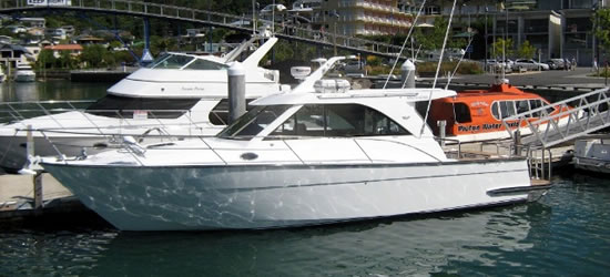 Sports Fisher 40