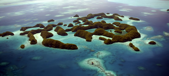 The 70 Islands of Palau