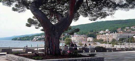The 12 km Promenade, known locally as the Lungomare
