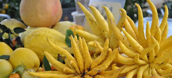 Colours of the Fruit Market