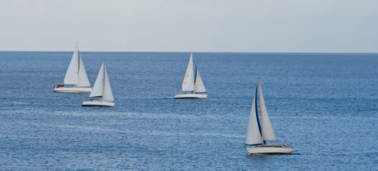 Local Sailing Yachts