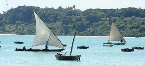 Local Dhows, Zanzibar