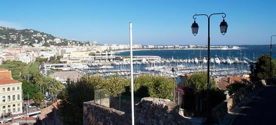 The Port of Cannes