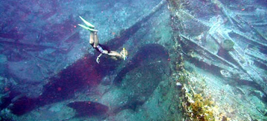 Excellent Diving on the Wreck of the Rhone Cesare