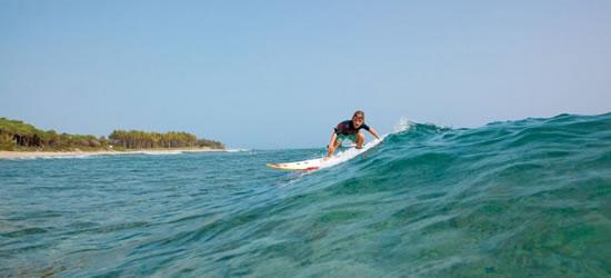 Nice Easy Waves
