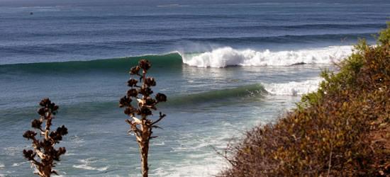Excellent Pacific Surf