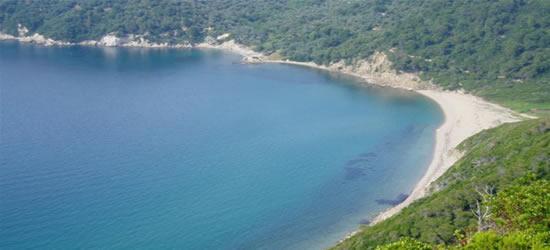 Wonderful Coastline