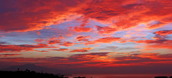Under a Blood Red Sky, Marbella