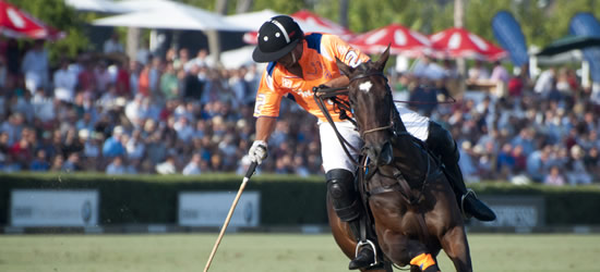 The Sotogrande Gold Cup