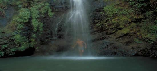 Martinique Falls