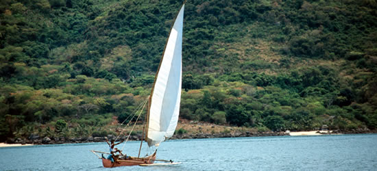 Local Dhow