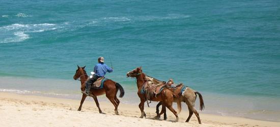 Horseback Riding, Baja Mexico