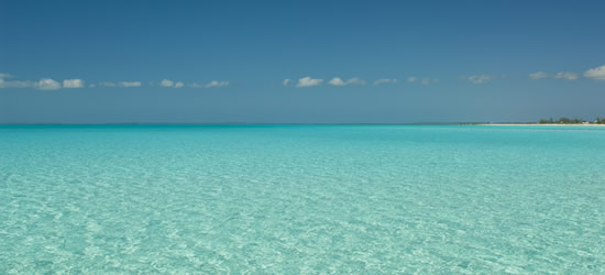 Shallow Waters of the Turks & Caicos