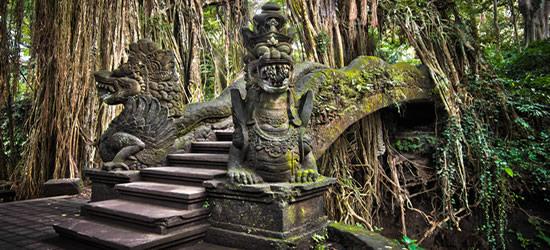 A Bridge through the Roots of a Banyan Tree, Bali