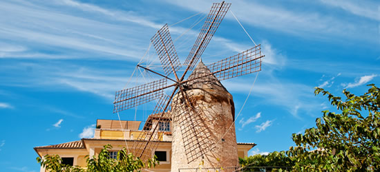 Traditional Windmill Palma